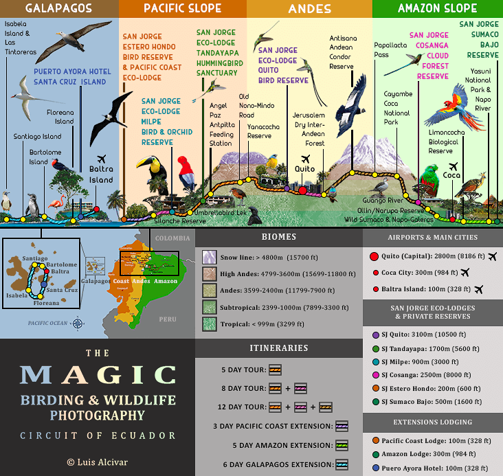 The Magic Birding Circuit of Ecuador Map 732